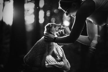 Minnie miniaturní americký ovčák beroucí si pamlskem od majitelky