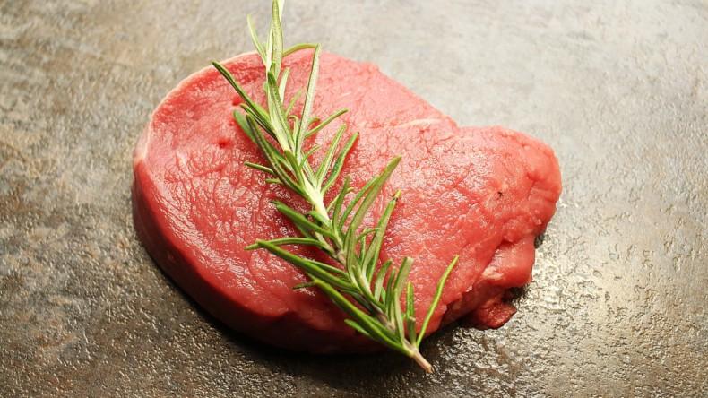 III. část – Suché psí krmivo neboli granule, co je kvalita a co marketing