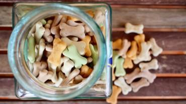 I. část – Suché psí krmivo neboli granule, co je kvalita a co marketing